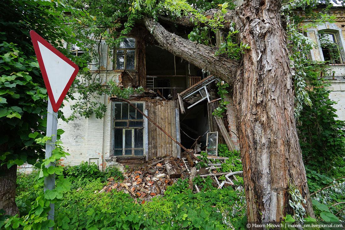 Какой сейчас уровень радиации в Чернобыле?