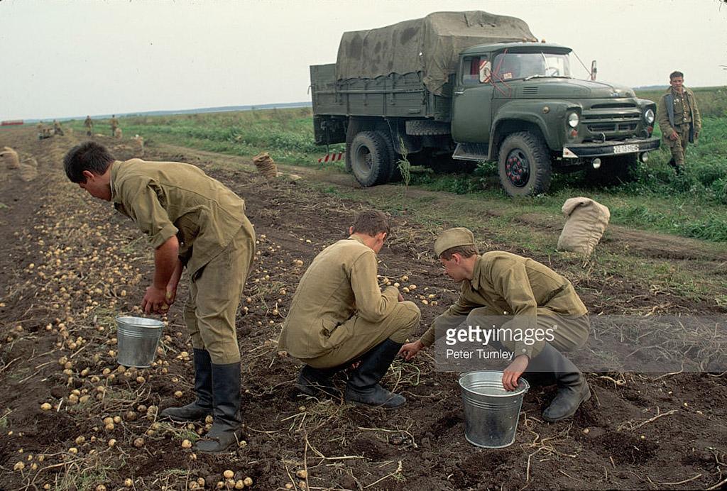 Миф про «натуральные продукты» в СССР.