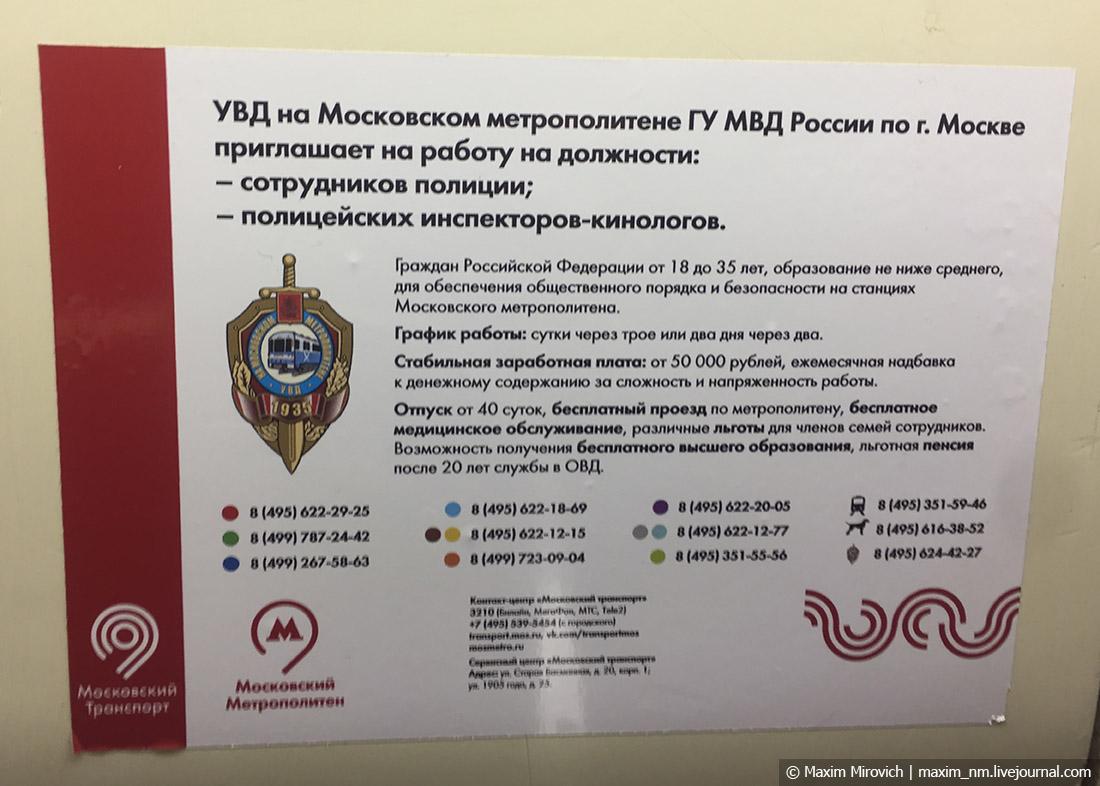 Почему в России так любят всё «бесплатное»?