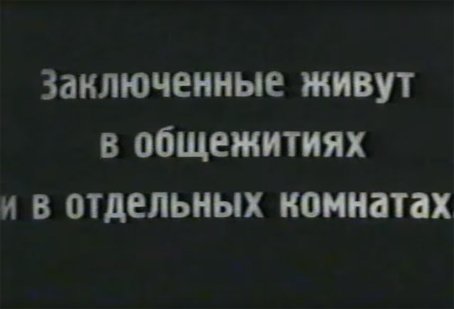 Как советским гражданам врали про концлагеря.