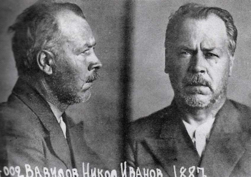 Наука, уничтоженная в СССР.