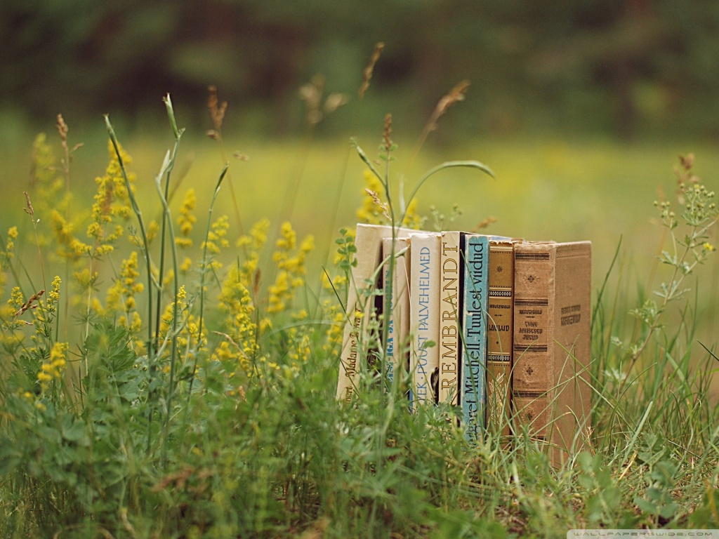 old_books_outdoors-wallpaper-1024x768