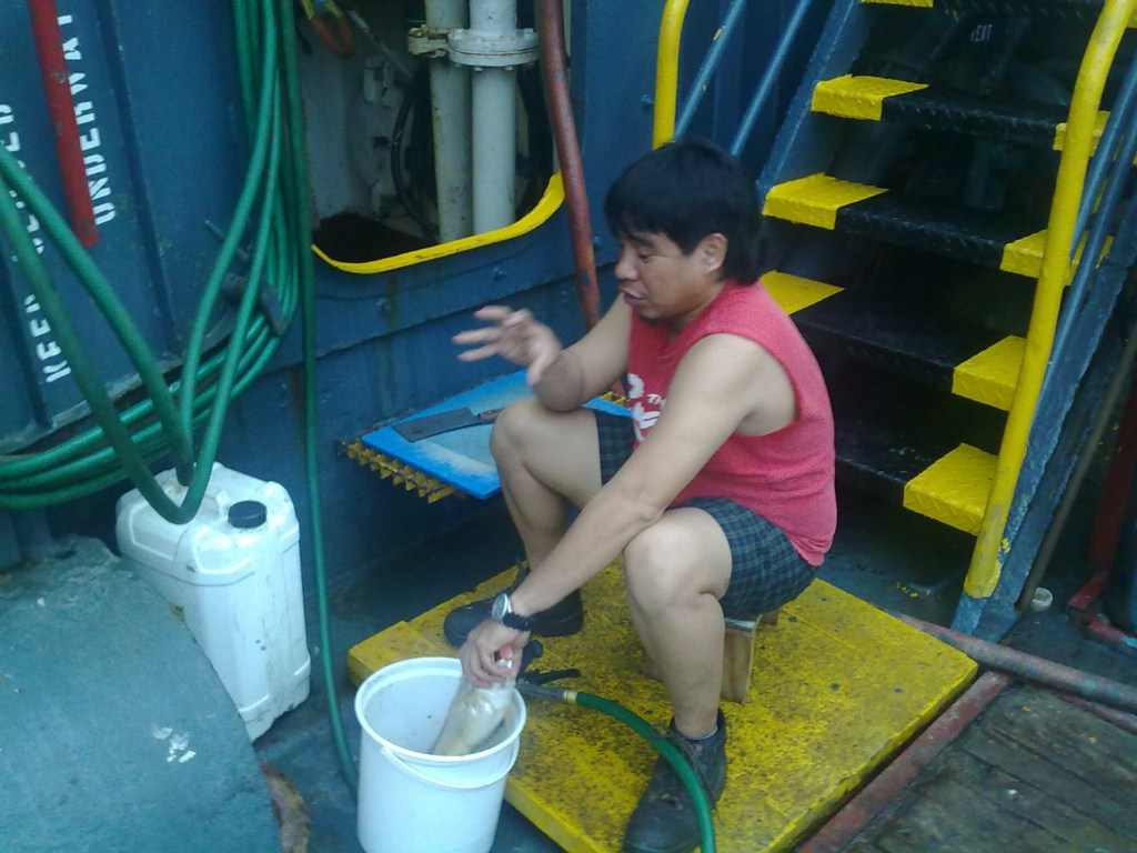 Матрос чистит рыбу [1024x768]