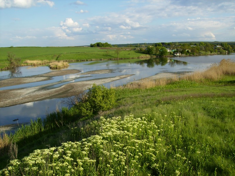река Богодухова