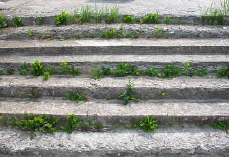 Десногорск 034 лестница на набережной
