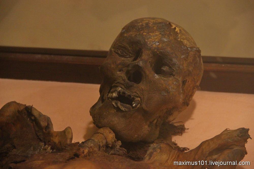 Археологический музей Амасьи