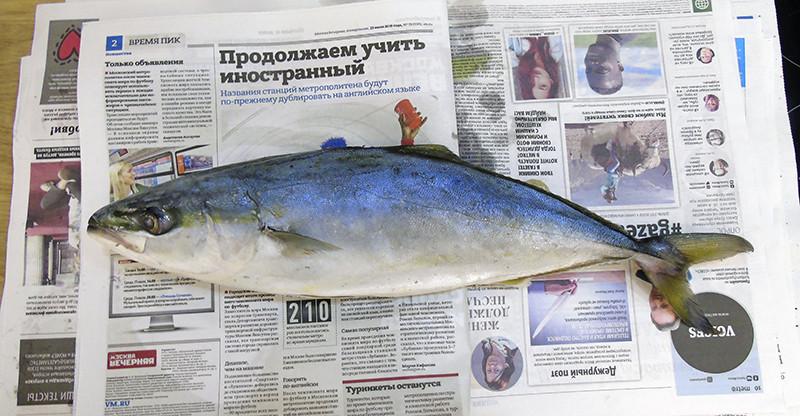 geltosvost2_gazeta1B++_osvet_aB