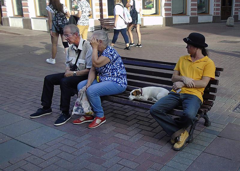 black_hat_white_dog1_vlevo1_zatemn32_contrast24__osvet_1aB
