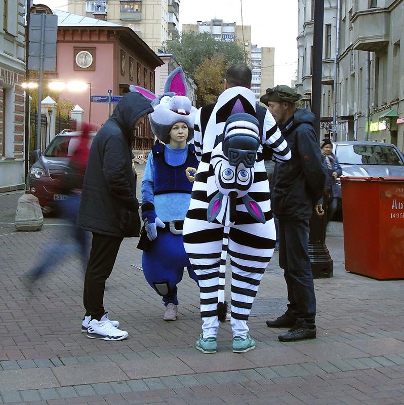 zebra1B++_1_osvet8_contrast23_osvet_aB