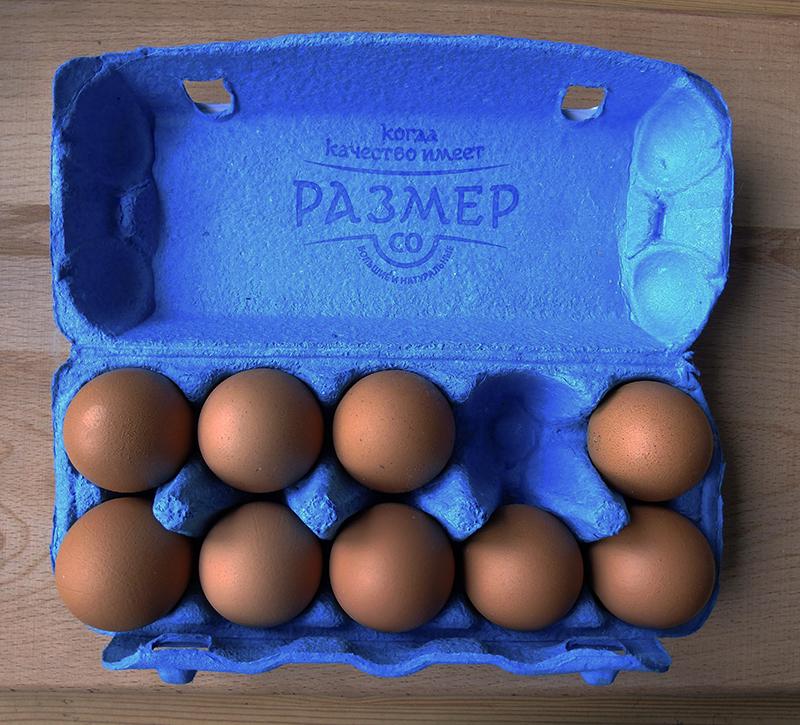 big_eggs1A_aB