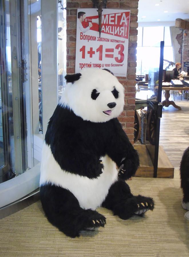 panda1D_head_osvet_1aC