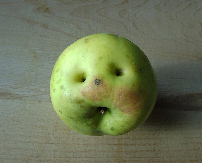 apple_eyes1_osvet_aB
