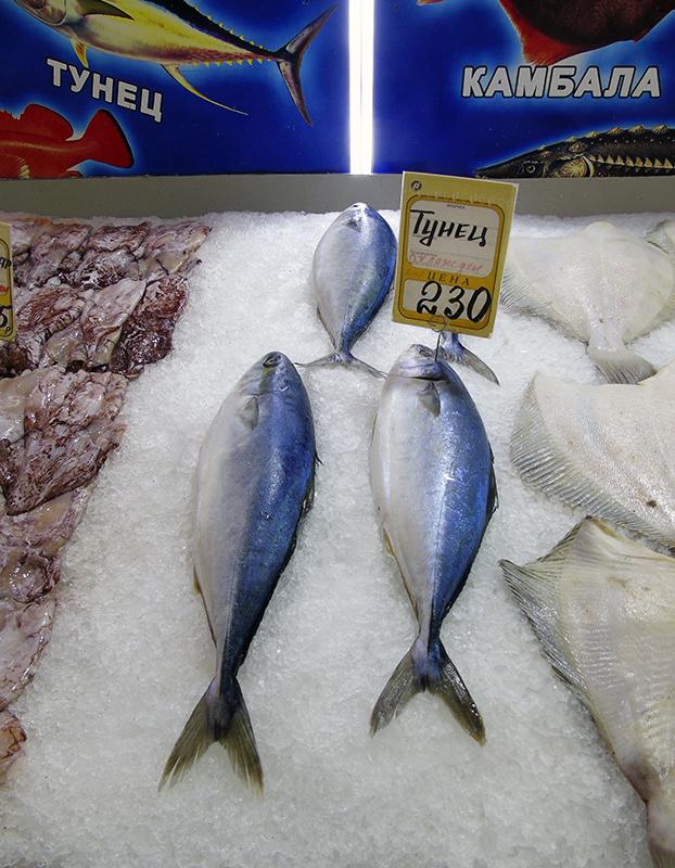кижуть на рынке zheltohvost_as_thuna1_aB