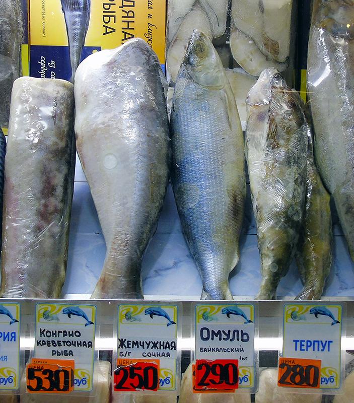 Неправильные названия рыб на нашем рынке 3A_hanos_as_omul1A+_zatemn11_contrast22_edit_1aB