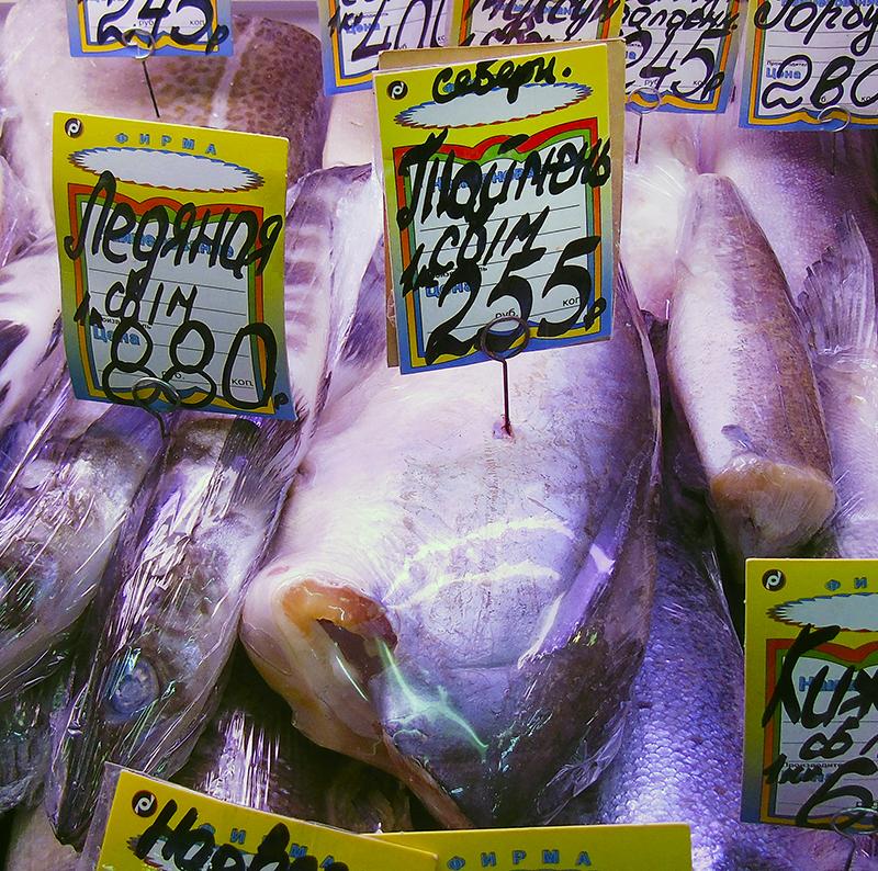 Неправильные названия рыб на нашем рынке 8A_pangassius1_as_taimen1A_edit_1_zatemn_aB