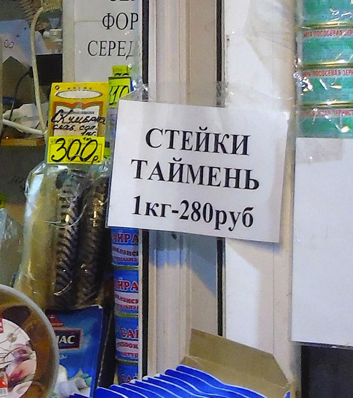 9_steiki_taimen1C++_contrast24_1_1aB