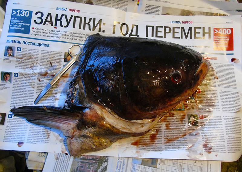 Неправильные названия рыб на нашем рынке head1_gazeta1C+_edit_aB