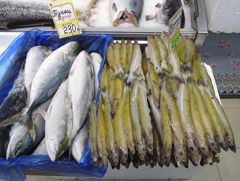 Неправильные названия рыб на нашем рынке 18_1B_pejerey_as_koryshka1_i_zheltohvost_as_tuna1C+_edit_aB