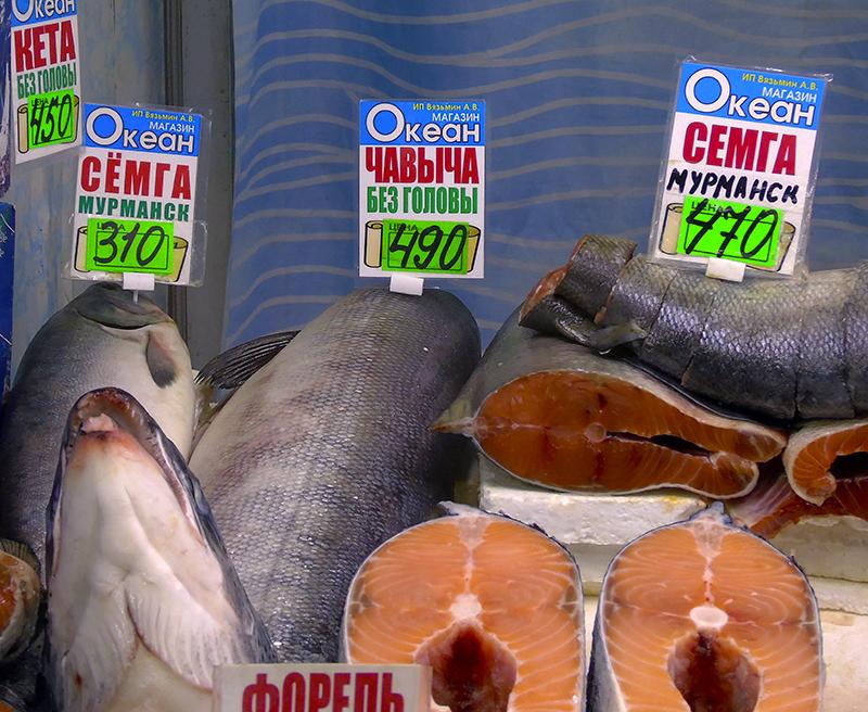 Неправильные названия рыб на нашем рынке 10_keta1_as_semga_Myrmansk_i_tchavycha1A_edit_aB