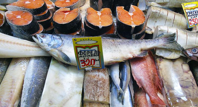 Неправильные названия рыб на нашем рынке gorbusha2_as_forel_Murmansk1_edit_rezk_1aB