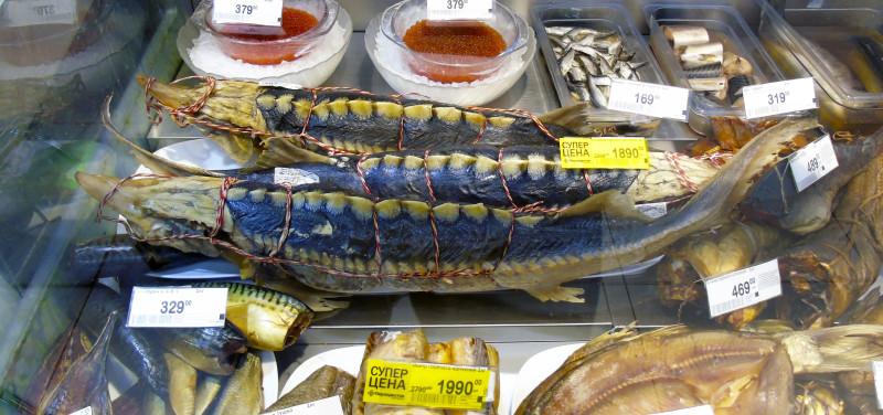 Неправильные названия рыб на нашем рынке osetr_smoked1A_edit_aB