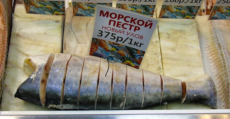 Неправильные названия рыб на нашем рынке 20_pangassius_as_pestr1_edit_aB