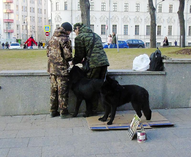 black_dogs1A+_1_1_osv_1