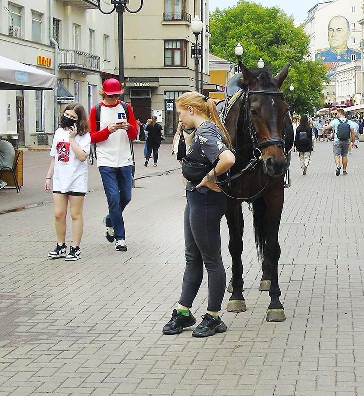horse1A+_1aB