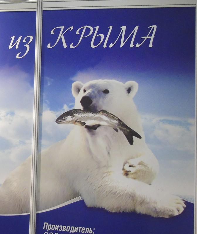 Arktica_conserv1B+_1aB