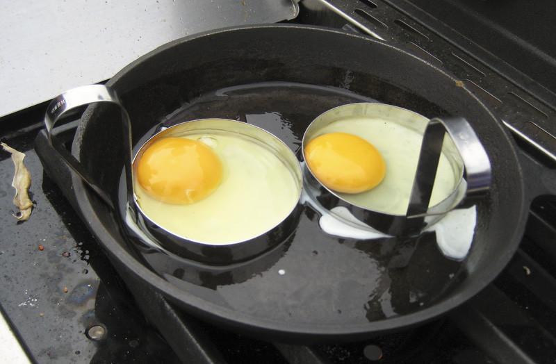 Australia6_eggs1_rezko_autocolour_aB