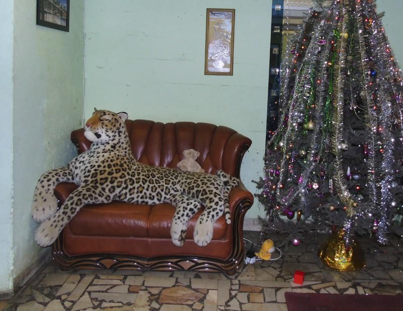 leopard1_1_osvetl15_contras20_osvetl_aB
