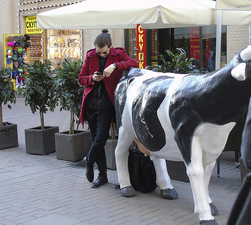 cowhipster1B+_vlevo3_zatemn11_contrast19_osvet_1aB