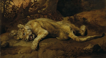 Frans-Snyders-The-Lioness