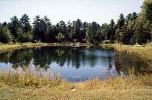 pond_oval_sm4