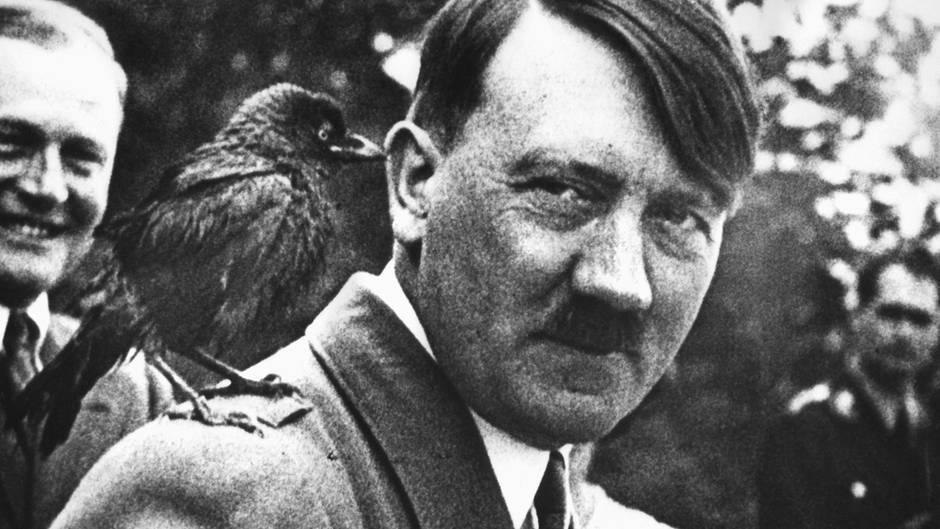 животные в Рейхе 3