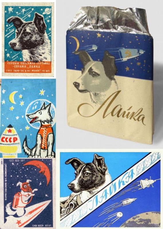 Вокруг полёта первой собаки-космонавта