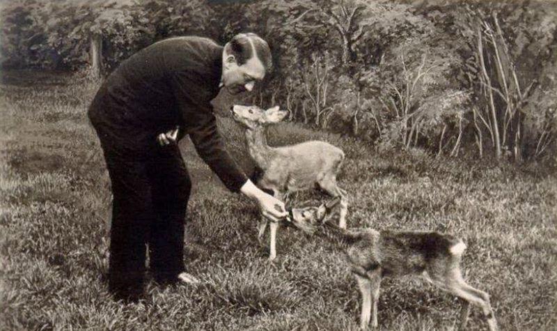 85 лет назад. Гитлер как зоозащитник