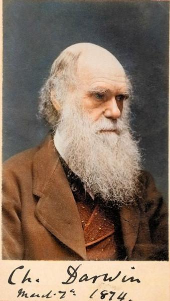 День в истории. Дарвин и Линкольн Линкольна, принцип, Дарвина, века», насилия, «гуманного, история, гражданской, борьба, помощи, Кстати, перед, февраля, вполне, жестокостей, Линкольн, который, хитрости, вырастают, рождения