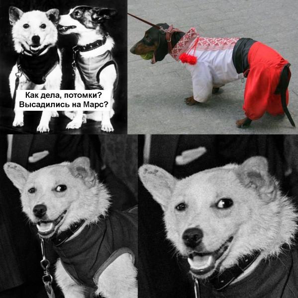 http://ic.pics.livejournal.com/maysuryan/46825033/1924436/1924436_600.jpg