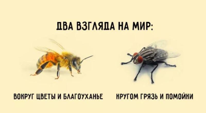 Коротко. Два взгляда на СССР