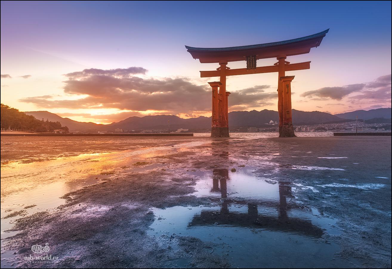 японские ворота тории фото карловна чего стоит