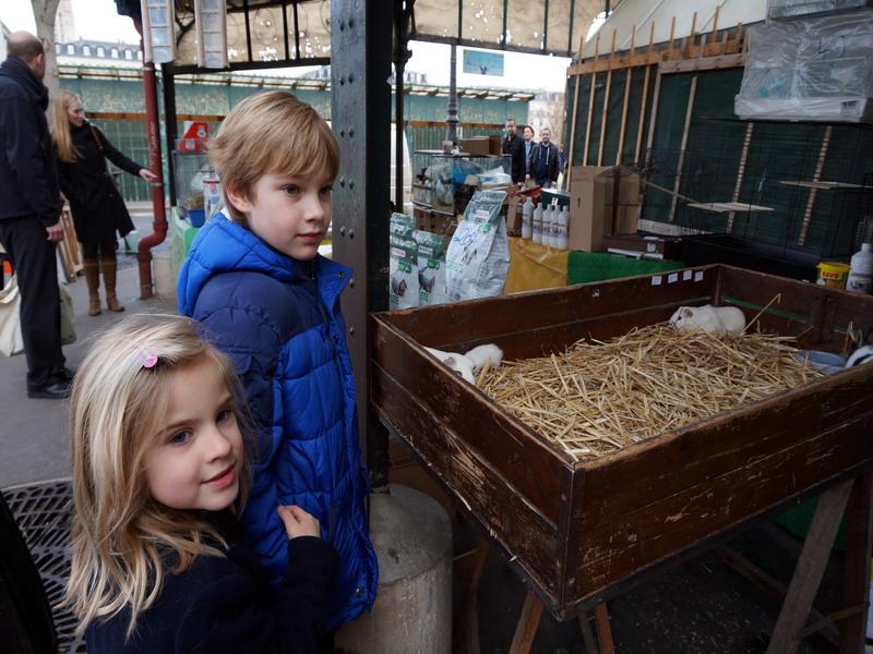 цветочный рынок Ситэ 3 izm