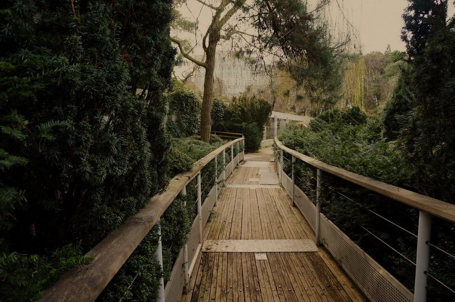Атлантический висячий сад у вокзала Монпарнас 3 izm