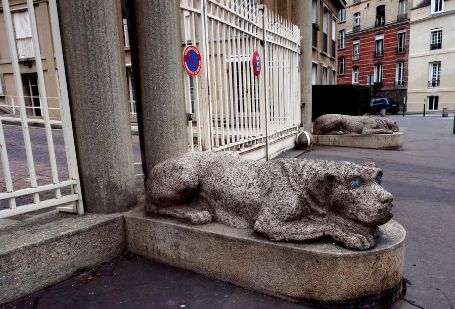 львы на улице Berbier de Mets izm