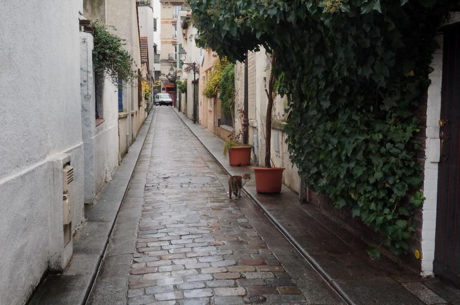 переулок bourgoin 2 izm