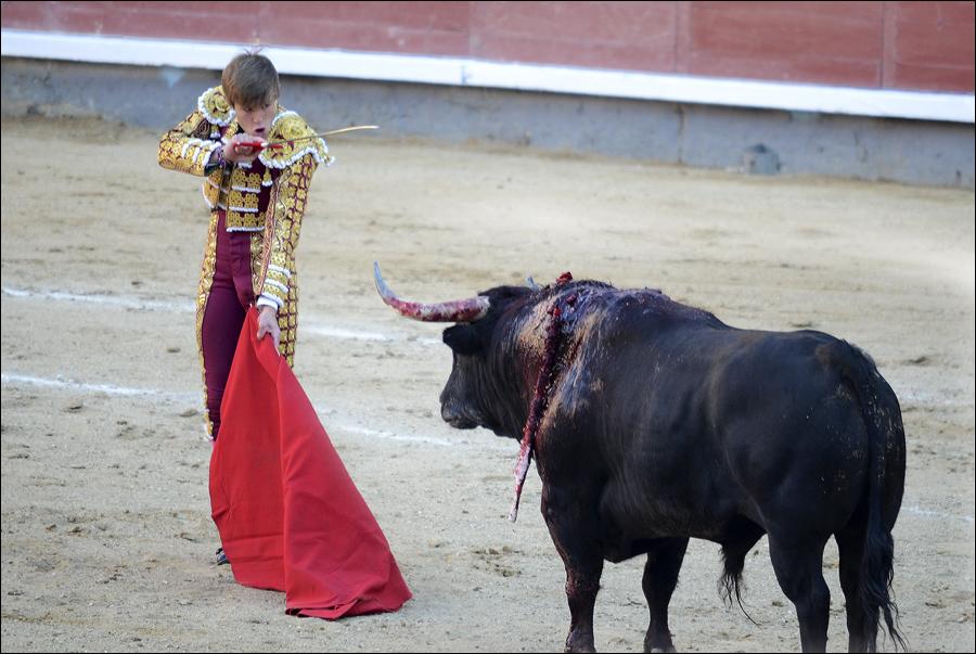 Las Ventas_0364