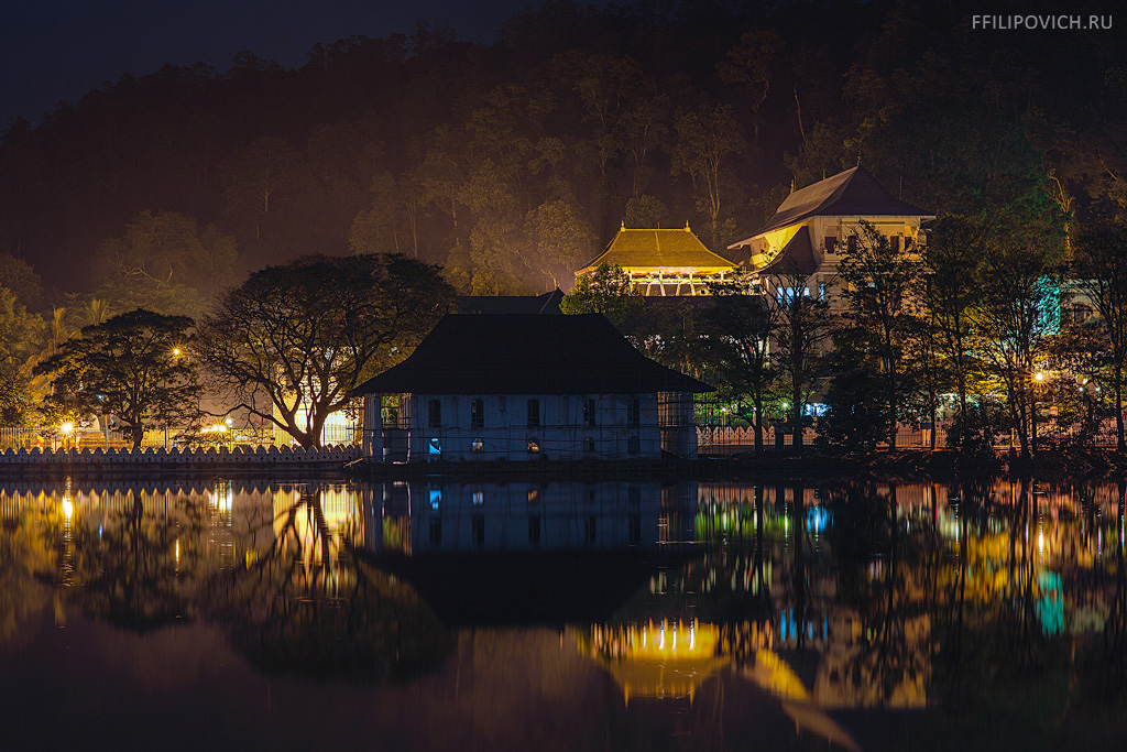 night-kandy