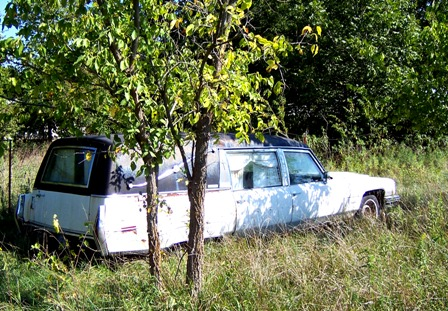 hearse in its natural habitat