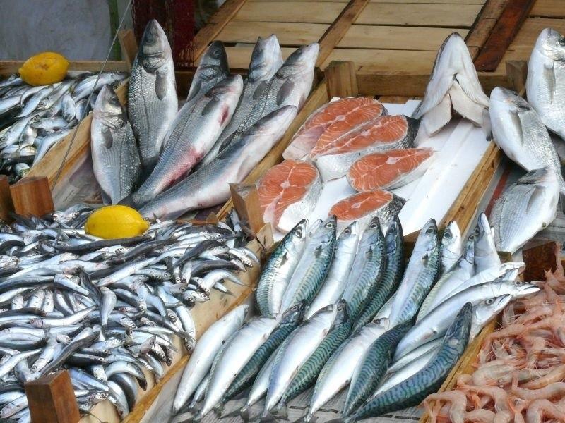 Объем вылова рыбы в РФ за 2019 год