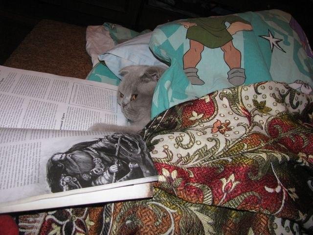 Шила читает